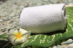 Frangipani. White towel, Frangipani and leaf, taken at a Thai Spa Stock Photo