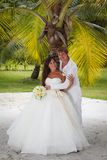 Букет свадьбы frangipani Стоковое Изображение RF