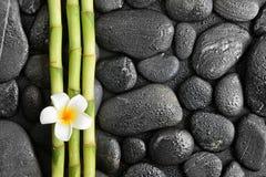 Frangipani and bamboo Stock Photo