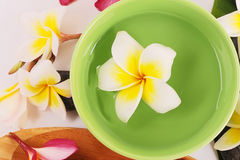 Frangipani on bamboo mat Royalty Free Stock Photos