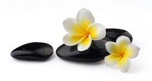 Frangipani com pedras dos termas Imagem de Stock Royalty Free