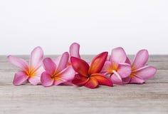 Frangipani- eller Plumeriablomma på träbakgrund Tvål-, handduk- och blommasnowdrops Arkivbild