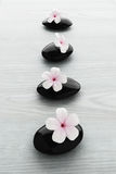Frangipani flower on black stone, zen spa Royalty Free Stock Photography