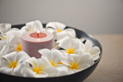 Frangipani flower and candle decoration Royalty Free Stock Images