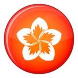 Frangipani flower icon, flat style Royalty Free Stock Photos