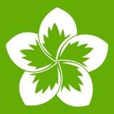 Frangipani flower icon green. Frangipani flower icon white isolated on green background. Vector illustration Stock Photos