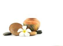 Frangipani flower (Plumeria)   on white background Royalty Free Stock Photography