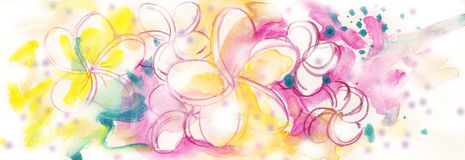 Frangipani Flowers. A colorful artwork with frangipani flowers, done in watercolor and digital