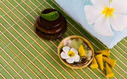Frangipani flowers and leaves with zen stones. Royalty Free Stock Image