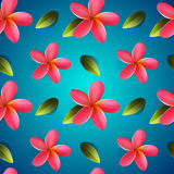 Frangipani flowers seamless pattern, Songkran Festival Stock Images