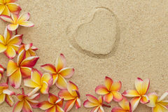 Frangipani, plumeria flowers, with print of heart. Group of frangipani, plumeria flowers and a  shape of heart, on sand Stock Images