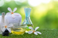 Frangipani plumeria Spa Flower treatment and massage, relax and healthy care. Royalty Free Stock Photo
