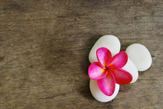 Frangipani and Rock on wood for spa room Royalty Free Stock Image