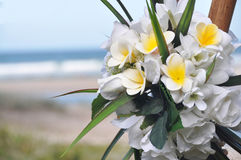 A Frangipani & Rose Bride Bouquet of Buds at Beach royalty free stock image