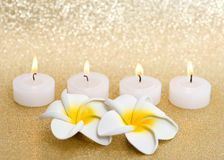 Frangipani spa flowers with candles Stock Photography