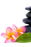 Frangipani and spa stones Royalty Free Stock Image