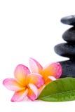 Frangipani and spa stones Royalty Free Stock Image