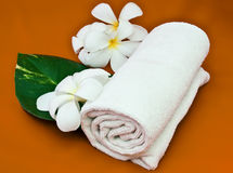 Frangipani with towel. And leaf Stock Photo