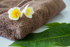 Frangipani and towel Royalty Free Stock Photos