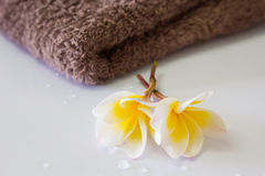 Frangipani and towel Stock Photo