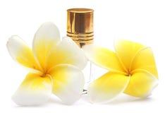 Frangipani tropical com garrafa de perfume Imagem de Stock