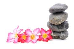 Frangipani und Zen Stone stockbild