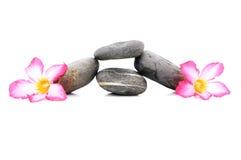 Frangipani und Zen Stone stockfotos