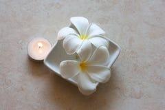 Frangipani y luz de una vela Foto de archivo libre de regalías