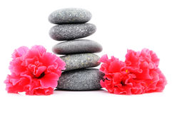 Frangipani And Zen Stone. Zen And Spa Stones With Hibiscus Flower Over White Background Stock Photo