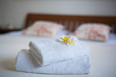 Frangipaniblomma på sängen Fotografering för Bildbyråer