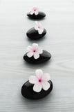 Frangipaniblume auf schwarzem Stein, Zenbadekurort Lizenzfreie Stockfotografie