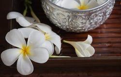 Frangipaniblumen- und -wasserschöpflöffel Lizenzfreie Stockbilder