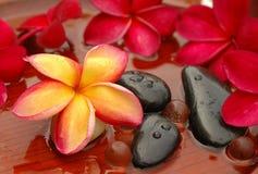 Frangipanis e pedras da terapia Fotos de Stock Royalty Free