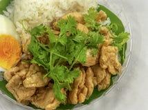 Frango frito com alho e arroz tailandês fotografia de stock royalty free