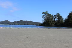 Frank Island, Tofino, BC Royalty Free Stock Photo