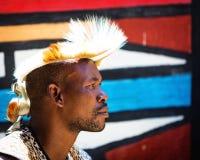 Frank stående av Zulu Warrior Arkivbilder