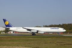 Frankfurt Airport - Airbus A340-300 of Lufthansa takes off Royalty Free Stock Image