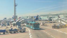 Frankfurt Airport apron traffic stock video footage