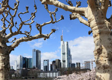 Frankfurt financial district Stock Photos