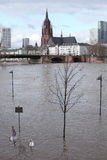 Frankfurt Flood 2011 Stock Image