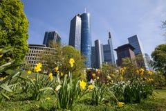 Frankfurt germany skyskraper in the spring Royalty Free Stock Photo