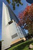 Frankfurt Sky Scraper Stock Images
