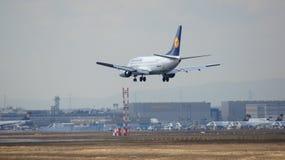 FRANKFURT TYSKLAND - FEBRUARI 28th, 2015: Lufthansa Boeing 737-530, MSN 24824, landning för registrering D-ABIL på en landningsba Arkivfoto