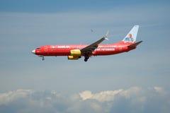FRANKFURT TYSKLAND - JULI 09., 2017: TUIfly FLYGBOLAG Boeing 737-800 med den röda annonseringen landar på den Frankfurt flygplats Royaltyfria Foton