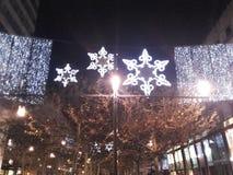 Frankfurt Zeil zu Weihnachten Royaltyfria Foton