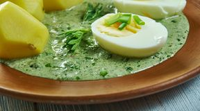 Frankfurterworst groene saus royalty-vrije stock afbeeldingen