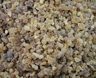 Frankincense Stock Image