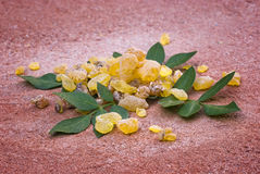 Frankincense Boswellia Papyrifera, resin and leaves, Incense f Stock Photo