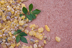 Frankincense Boswellia Papyrifera, resin and leaves, Incense f Royalty Free Stock Image