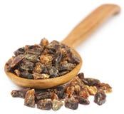 Frankincense dhoop, naturalny aromatyczny żywica fotografia stock